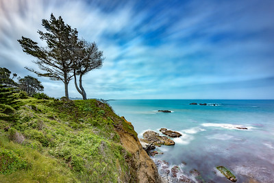 Cypress on the Edge, Gualala, California