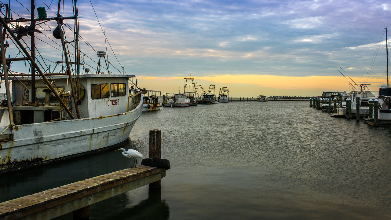 Aransas Bay Shrimper & Ingret Sunrise