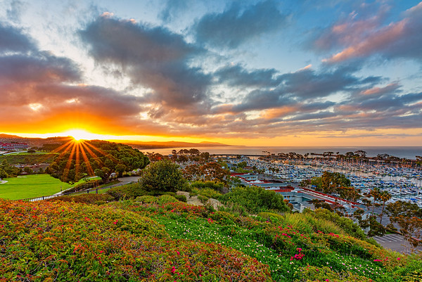 Dana Point Sunrise