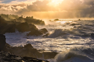 Gorgeous light hits crashing waves during a break in the storm along the Oregon Coast - Shore Acres State Park