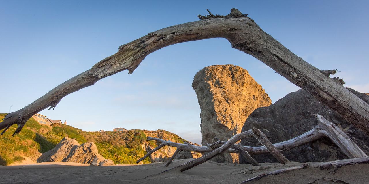 Bandon Beach Driftwood with Sea Stacks