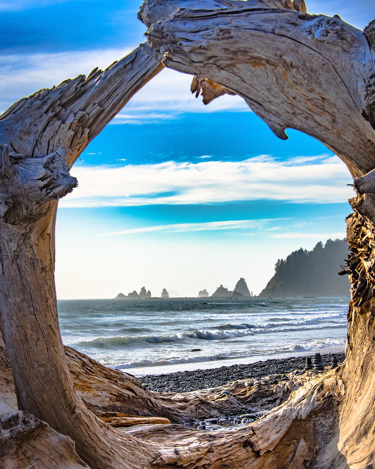 Driftwood Window, Rialto Beach