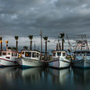 Aransas Bay Stormy Shrimpers