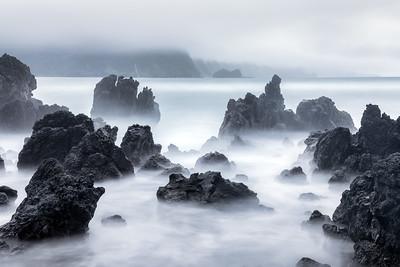 Lava Rock, Study 1, Maui, Hawaii