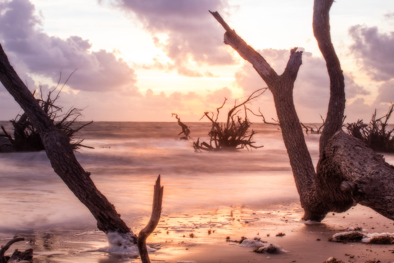 driftwood black rock beach florida ocean sand water long exposure sunrise  golden hour
