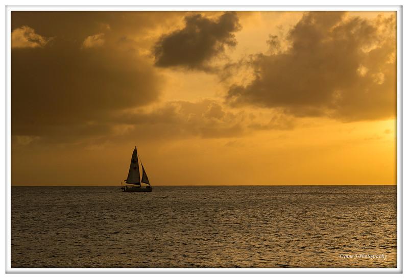 Sail in to Sunset . Barbados