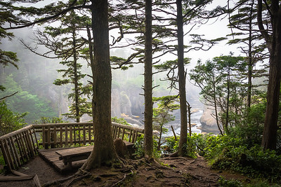 Cape Flattery Trail Viewpoint