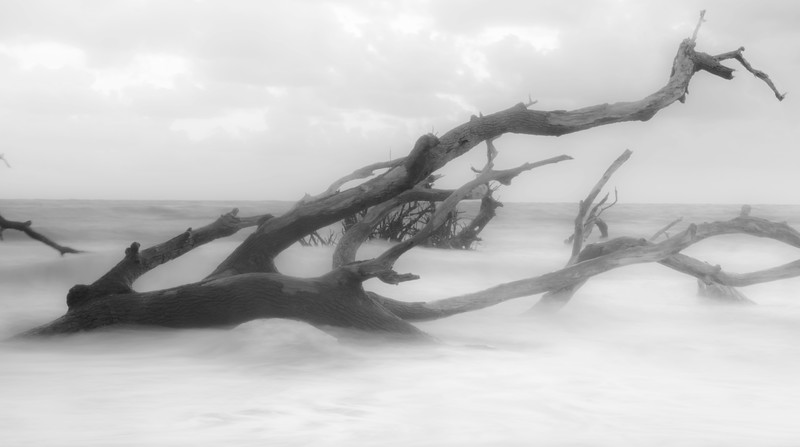black rock beach florida ocean water long exposure driftwood high key black and white