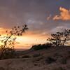 Wind Swept Sunset