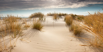 Coles Bay Dunes - Tasmania