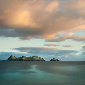 Roach Island, Lord Howe Island, Australia