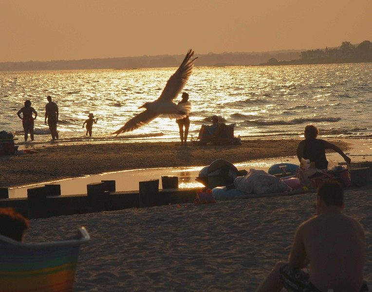 CT Coast-Aug18 110-D