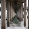 Under the Pier 3