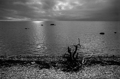 Gotland Seaside