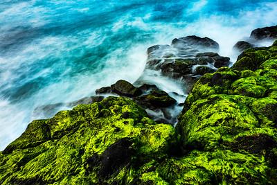 Sea Fluidity