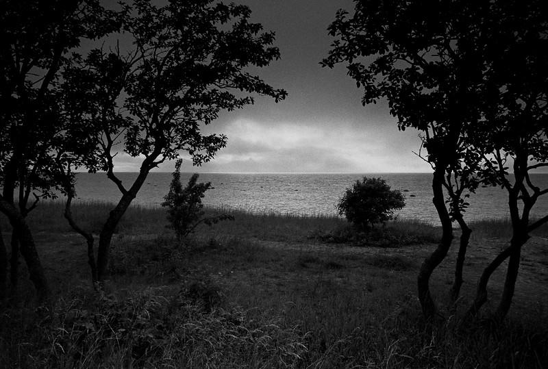 Gotland Seaside I