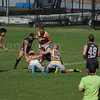 SU Golds defeat UTS Bats