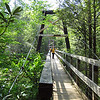 Chain Gang's Thumper Thaw 2012 - this is ONE SWINGING BRIDGE!