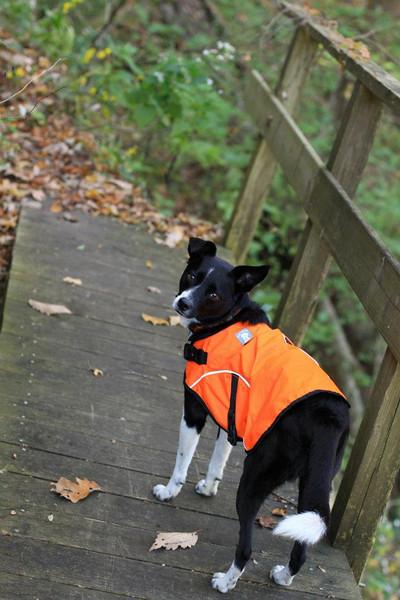 Kenda on Slickrock Creek Trail