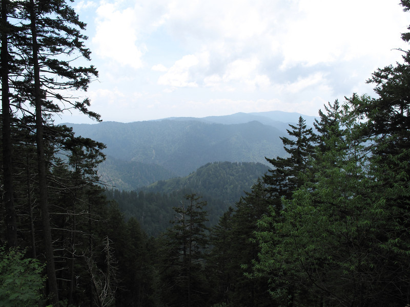 A view of the mountains from Alum Cave Trail, GSM NP.