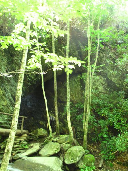 Alum Cave Trail, GSM.
