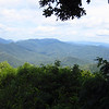 The view at Joyce Kilmer Wilderness.