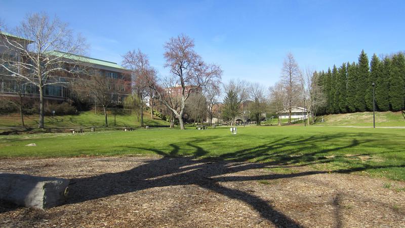 Jack Greene Park, Maryville.