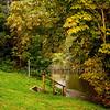 River Flowing In Alcester