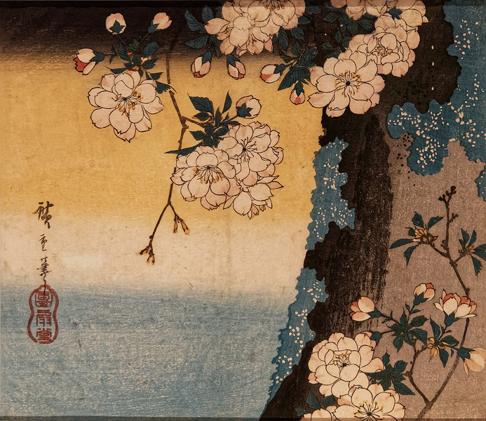 Double-flowered Cherry, by Utagawa Hiroshige (1797–1858)