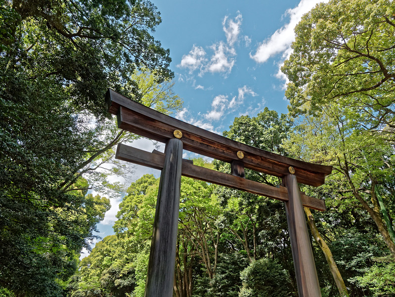 This massive inner torii is said to be the tallest in Japan.