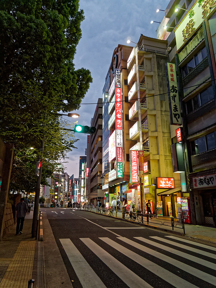 This and the following photos were taken in the Ueno district of Tokyo.