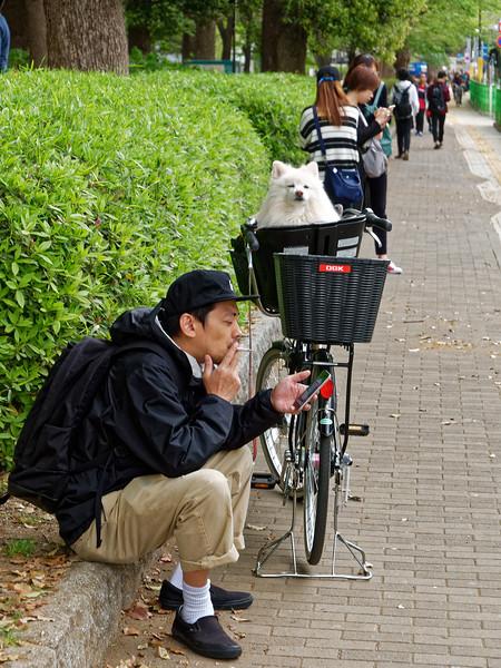 Sidewalk scene, Ueno Park, Tokyo