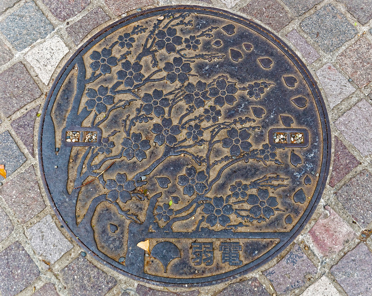 Manhole cover, Ueno, Tokyo