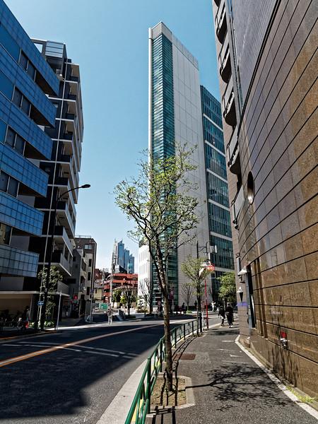 Yoyogi district, Tokyo, near Meiji Shrine