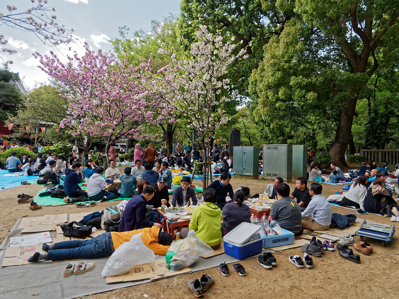 Ueno Park attracts enormous numbers of visitors who enjoy picnicking withn its grounds.