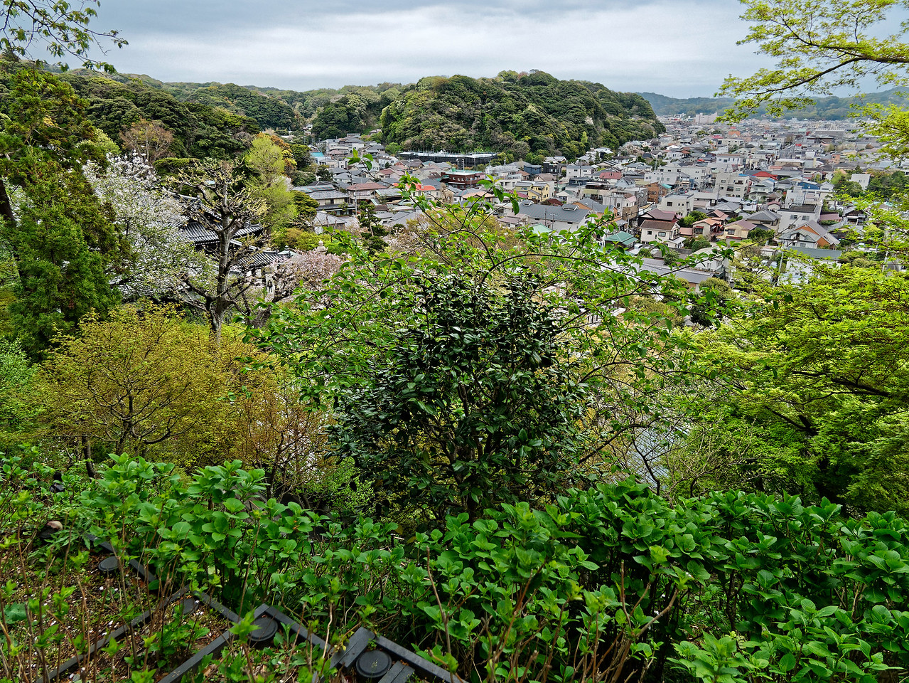 Hasedera Temple is located about halfway up Mount Kamakura. A view from its grounds takes in a portion of the city of Kamakura, with the sea visible from certain vantage points.