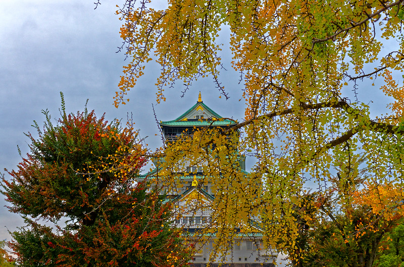 Osaka Castle dates originally from the late 16th century. Over the centuries it has been repeatedly devastated by wars and by fire. The present tower is a late-20th-century restoration.