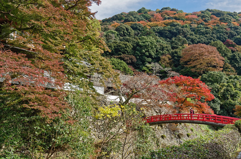 In the background at left, Ryuanji Temple, founded in the 7th century. It is a center for the Shugen-do Buddhist sect, which considers mountains to be the most sacred sites on earth.