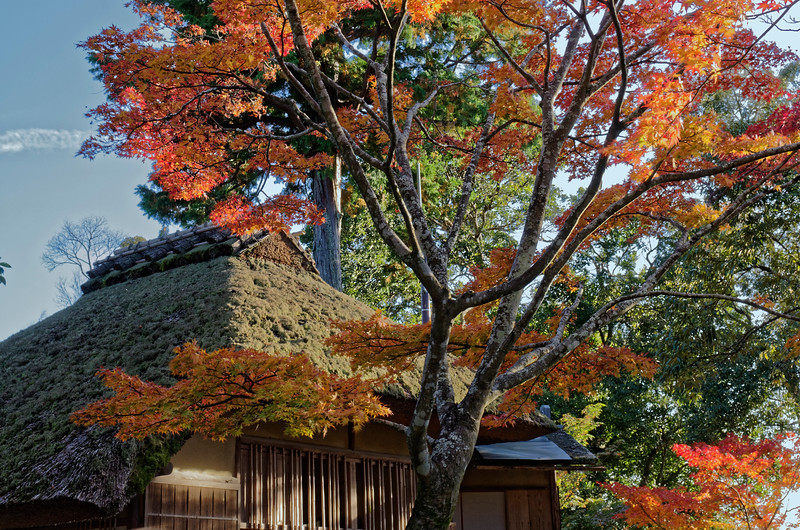 The park contains a tea house, Sekka-tei, which was built to entertain the emperor Go-Mizuno-o, who visited the temple in the 17th century.