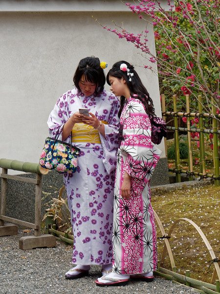 Happily, there were colorful kimonos everywhere. These women were checking a cell phone (what else to do?) in the Garden of a Hundred Flowers at Tenryu-ji.