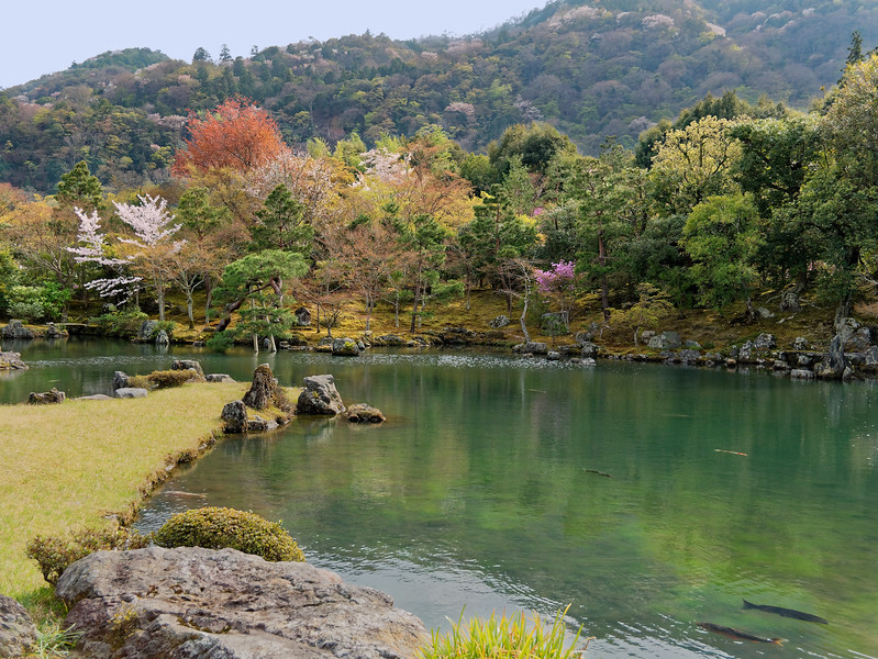 The temple's Sogenchi Teien, Sogen Pond Garden, designed as a so-called strolling pond garden, was created nearly 700 years ago by Zen master Muso Soseki and retains much of its original appearance today.
