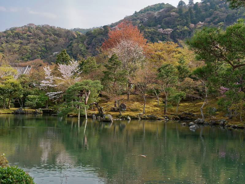 Sogenchi Teien again. The garden draws on a tradition known as <i>shakkei,</i> in which nearby mountains are used to give the garden a sense of greater depth and proportion.