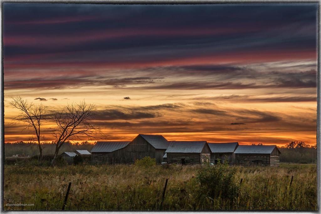 Farm at Sunset on Marchurst Road Near Dunrobin