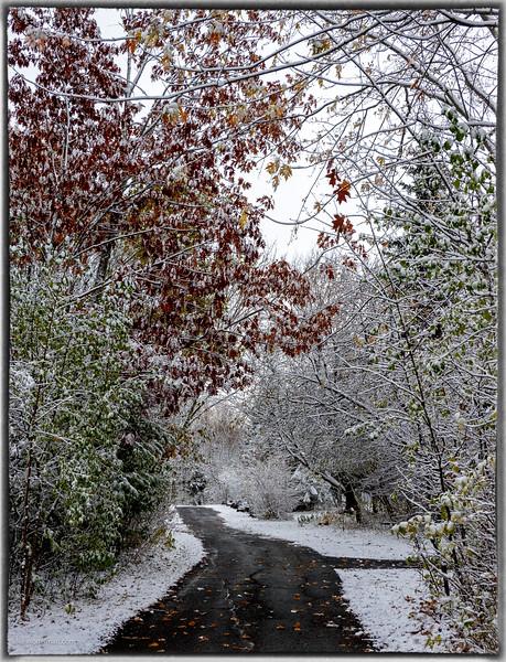 1st Snowfall of the Season