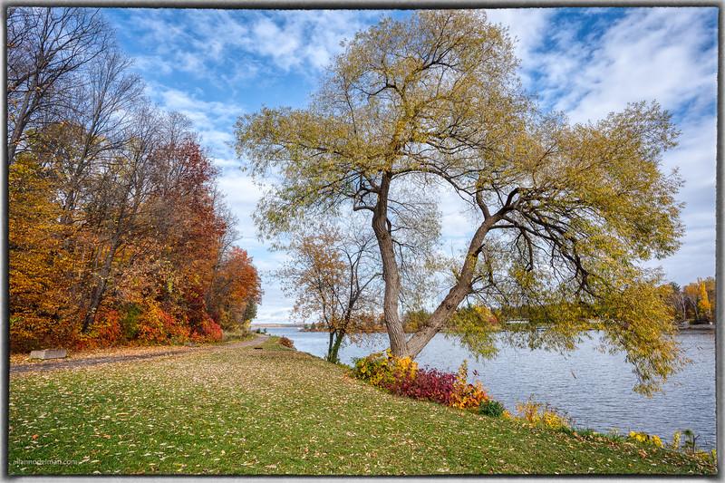Along the Madawaska River in Arnprior