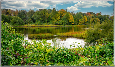 Rideau River at Carleton University Ottawa
