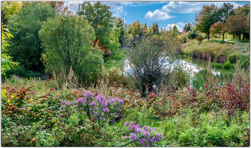 Kanata Storm Pond in Autumn