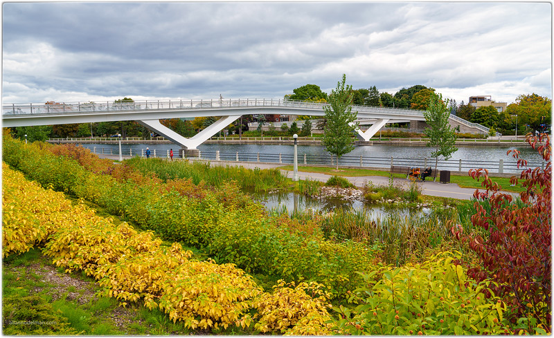 Flora Footbridge in the Glebe Ottawa