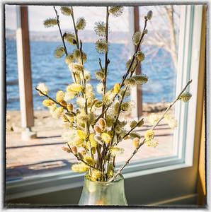 Willow Blossom Arrangement