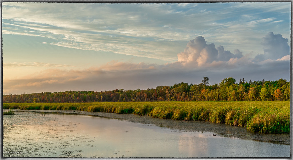 Constance Creek at Thomas A. Dolan